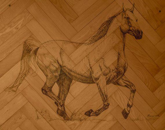Parketi Ratkovic konj tradicija
